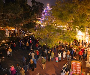 Carmel Devendorf Park Christmas Tree Lighting