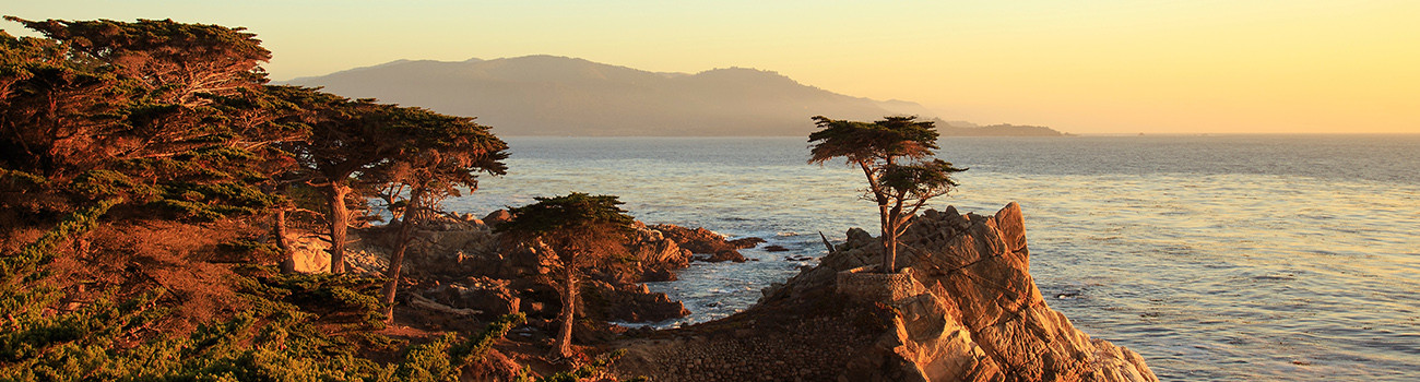 Pebble Beach Lone Cypress