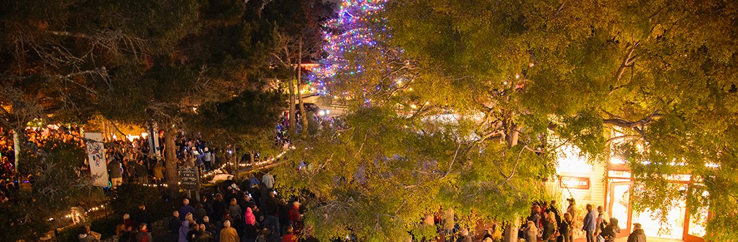 carmel christmas tree lighting