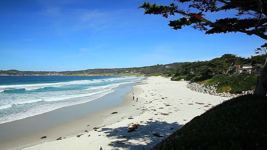 Video Famous Carmel Beach